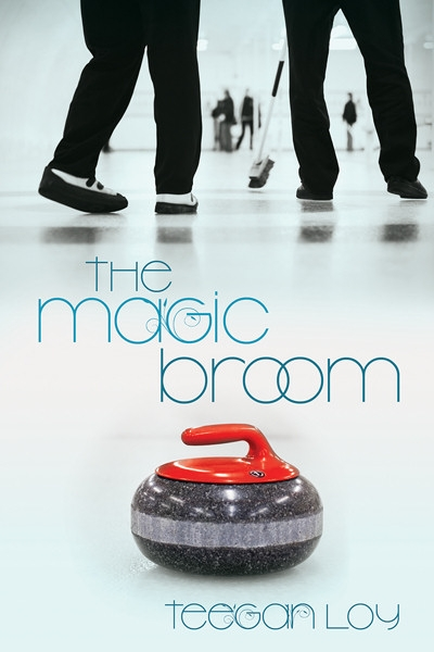 The Magic Broom book cover