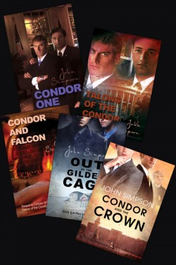 Condor One Series Packaged Set