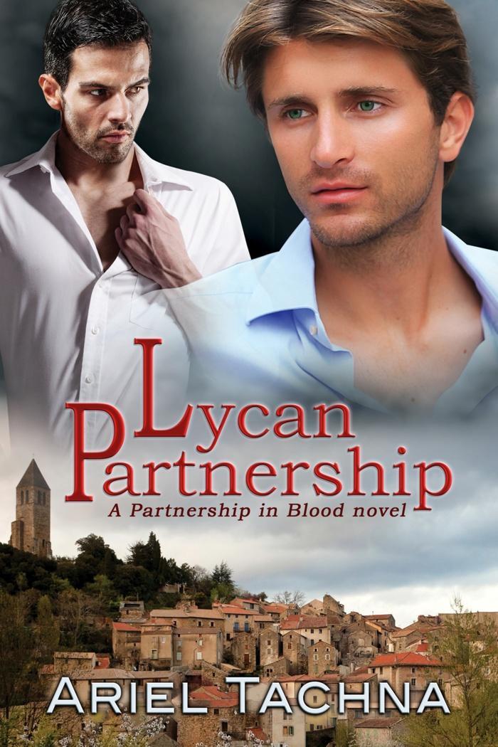 Lycan Partnership