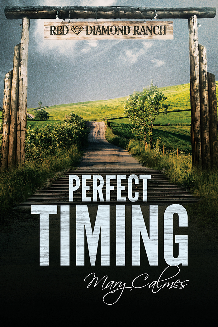 perfect timing by mary calmes dreamspinner press