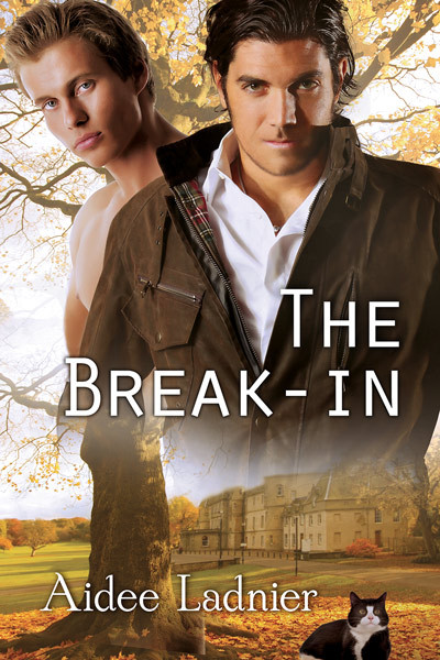 The Break-in