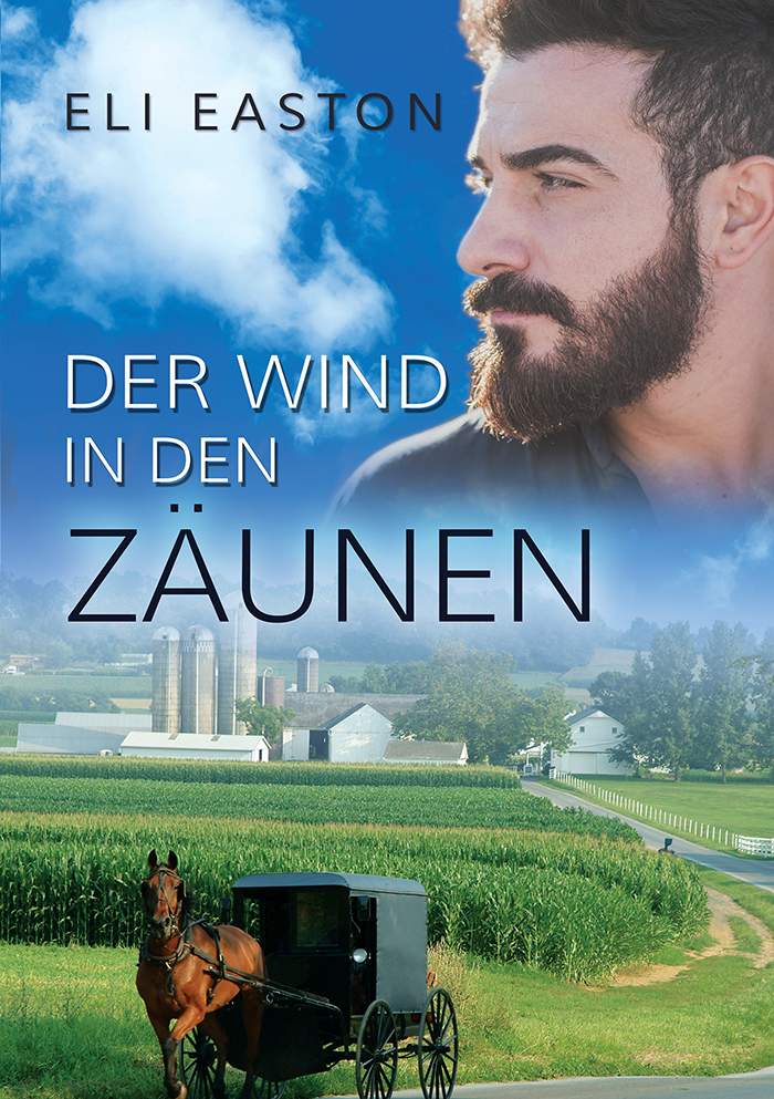 Der Wind in den Zäunen