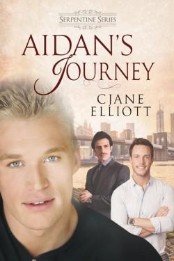 Aidan's Journey