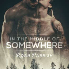 99-Cent eBooks by Roan Parrish