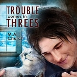 USA Today Review of Trouble Comes in Threes