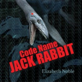 Awesome Review for Code Name Jack Rabbit