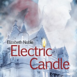 Wonderful Review of Electric Candle