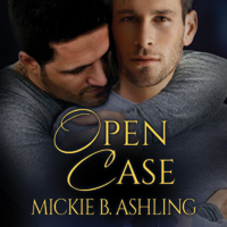 5 Stars for Open Case by Natosha at Gay Book Reviews
