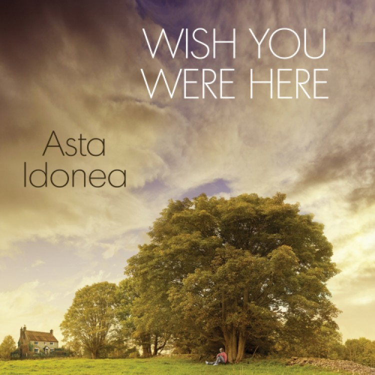 2017 Update - New Release: Wish You Were Here