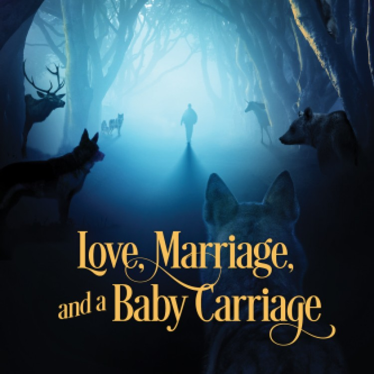 Free Read: Love, Marriage, and a Baby Carriage coda